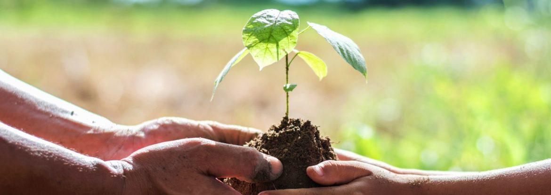 formation engagée solidarité environnement