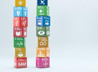 développement durable lyon impact